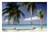 Beach - Affiliate Marketing Millionaire
